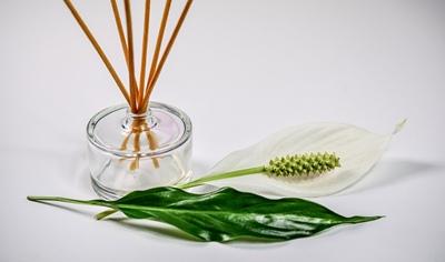 Aromaterapi-CC0-Monicore