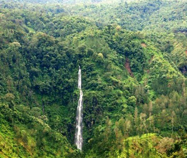 tempat wisata alam karanganyar Air Terjun Pringgodani