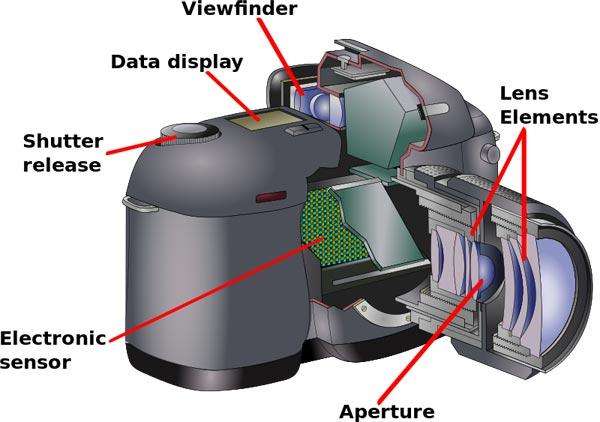 memeriksa-semua-fitur-saat-membeli-kamera-DSLR