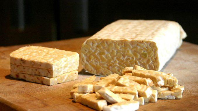produk fermentasi seperti tempe